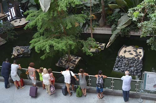 jardin tropical atocha