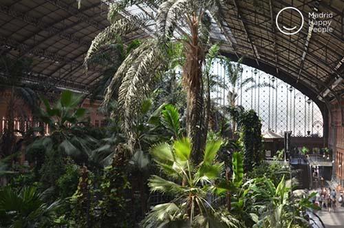jardin tropical atocha