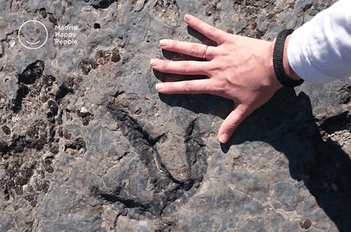 Ruta de los dinosaurios Soria