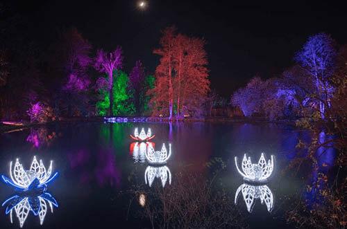 luces navidad jardín botánico