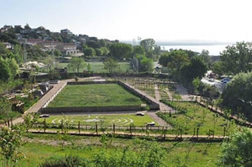 jardín castillo manzanares el real