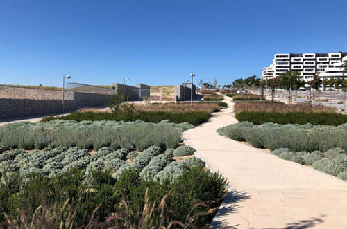 parque central valdebebas